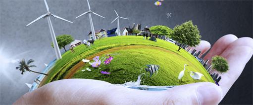 Experto en sostenibilidad empresarial del medio ambiente