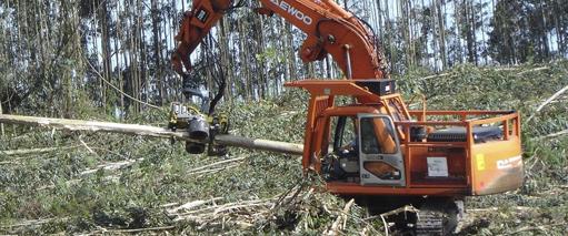 Desembosque y tratamientos de los subproductos forestales