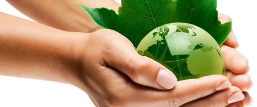 Experto en gestión ambiental y evaluación del impacto ambiental