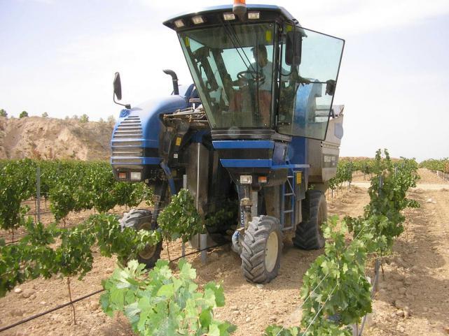 La Junta abona dos millones de euros a siete mil agricultores por asesoramiento para la mejora de sus explotaciones
