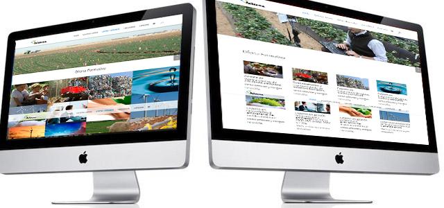 Presentación Web Acfidema